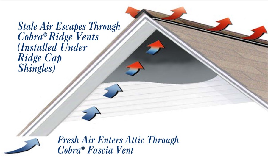 Need for Attic Ventilation